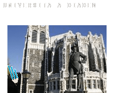Università a  Diadema