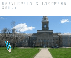 Università a  Lycoming County